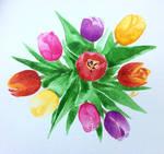 Tulips by Brikonfikon