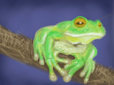 Frog by JLai