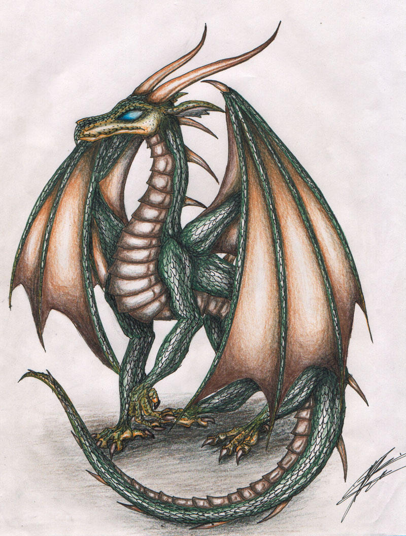 Golden Winged Forest Dragon By Draconic Goth On Deviantart