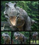 Full Size T-Rex