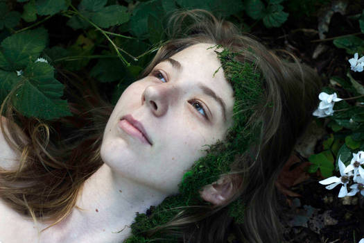 Mother Nature II