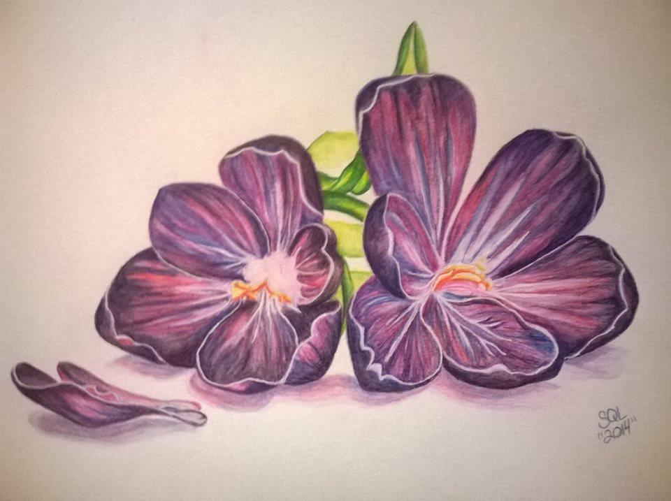 Purple flowers by KUTEDYMPLES