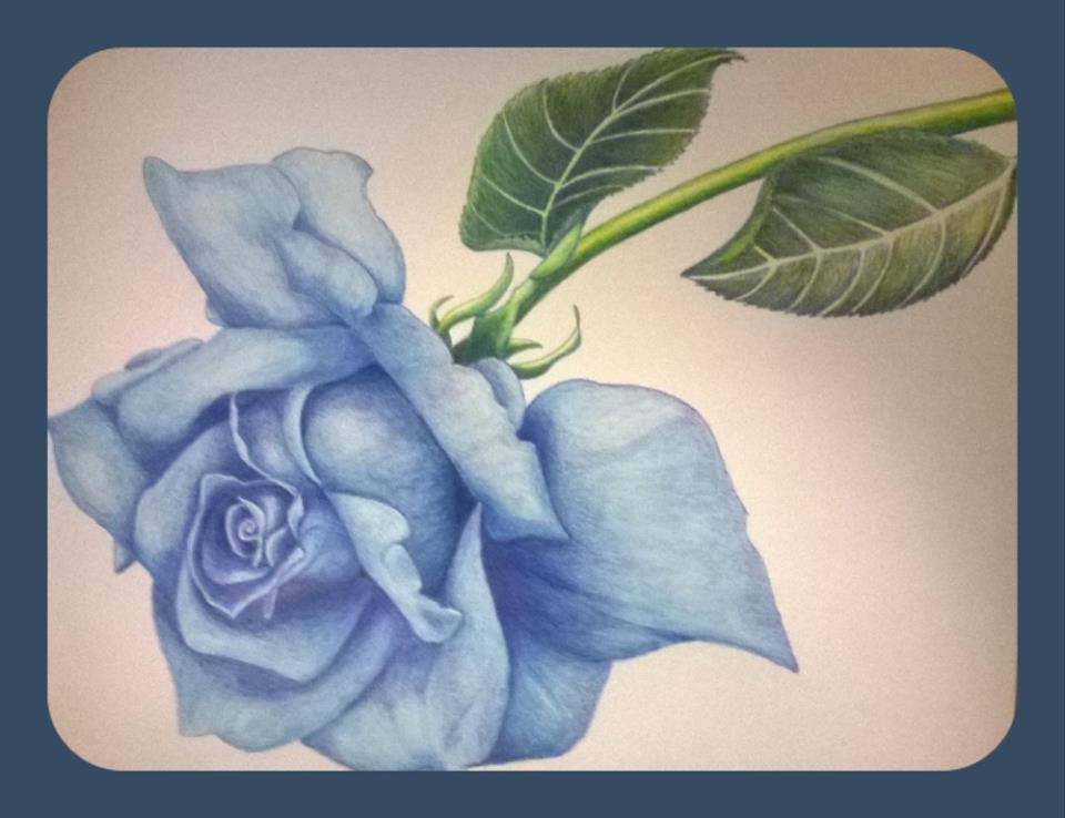 Blue Rose by KUTEDYMPLES