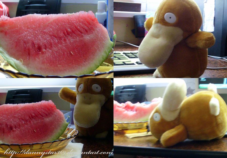 Kimchi eating watermelon by DannyStar369