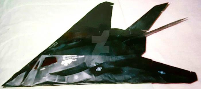 Lockheed F-117 Nighthawk Stealth Fighter pic.2