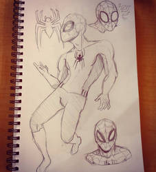 Spiderman Doodles by TheOrangeDaisy
