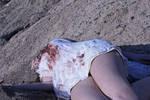 Exhibit 1: The dead