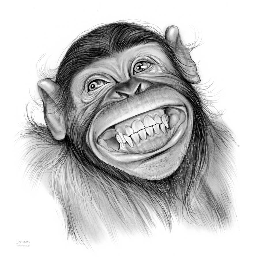 Прикольная обезьяна рисунки, украшали почтовые