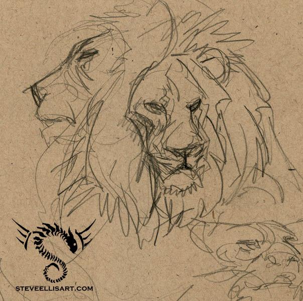 Lion Sketches by Steve-Ellis