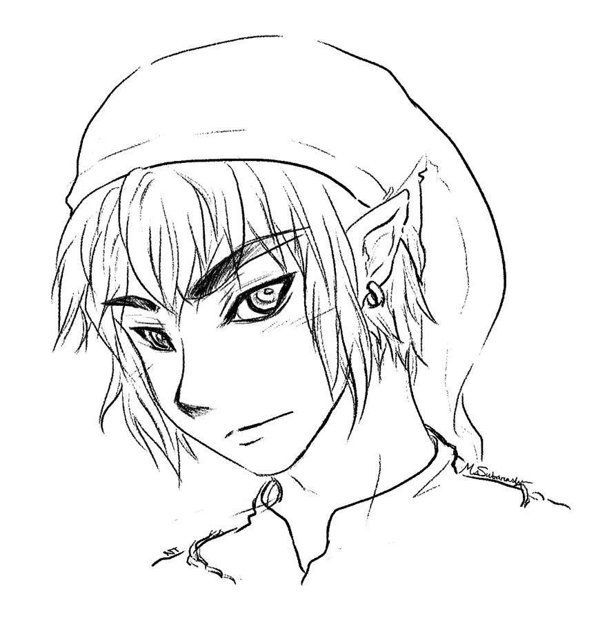 Zelda's Hero by MsSubarashii