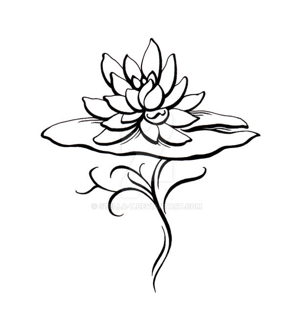 Lily Tattoo Line Drawing : Water lily tatoo design by stella t on deviantart
