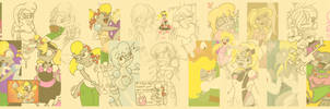 A Sammy Timeline by raygirl