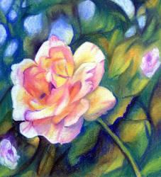 Pastel Rose by arisingmoon