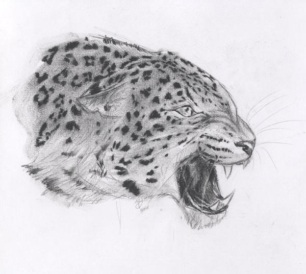 Snarling Leopard by Canyx