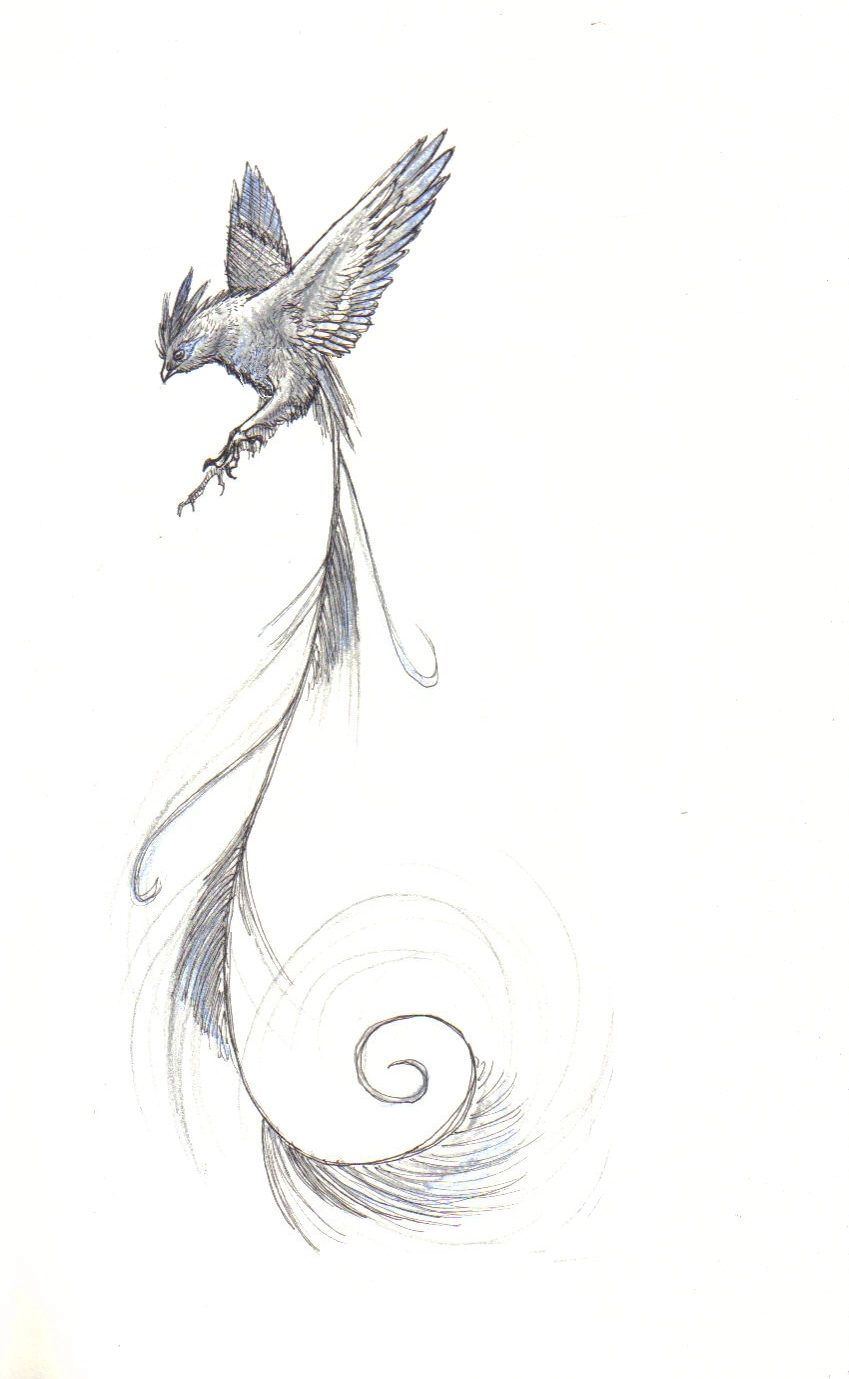 The Silver Bird By Canyx On DeviantArt