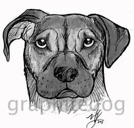 Marker sketch dog #2 by Canyx