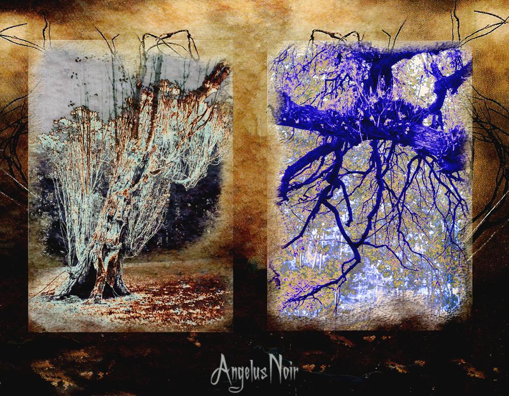 After the Rain by AngelusNoir