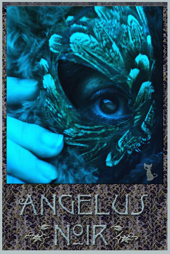 AngelusNoir's Profile Picture