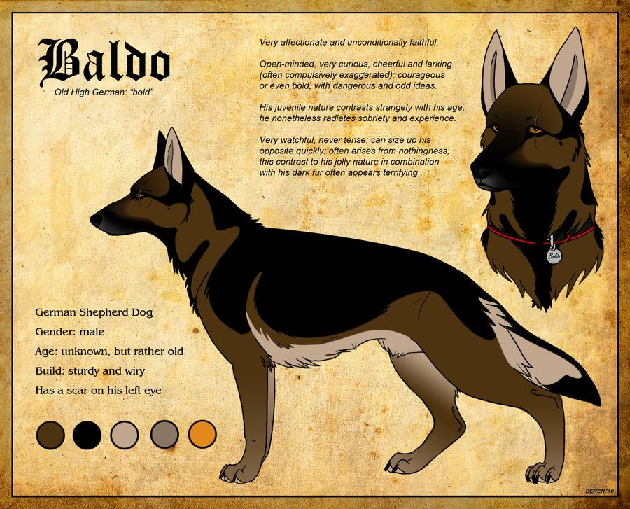 baldo_by_berenfox-d2slq6n.jpg