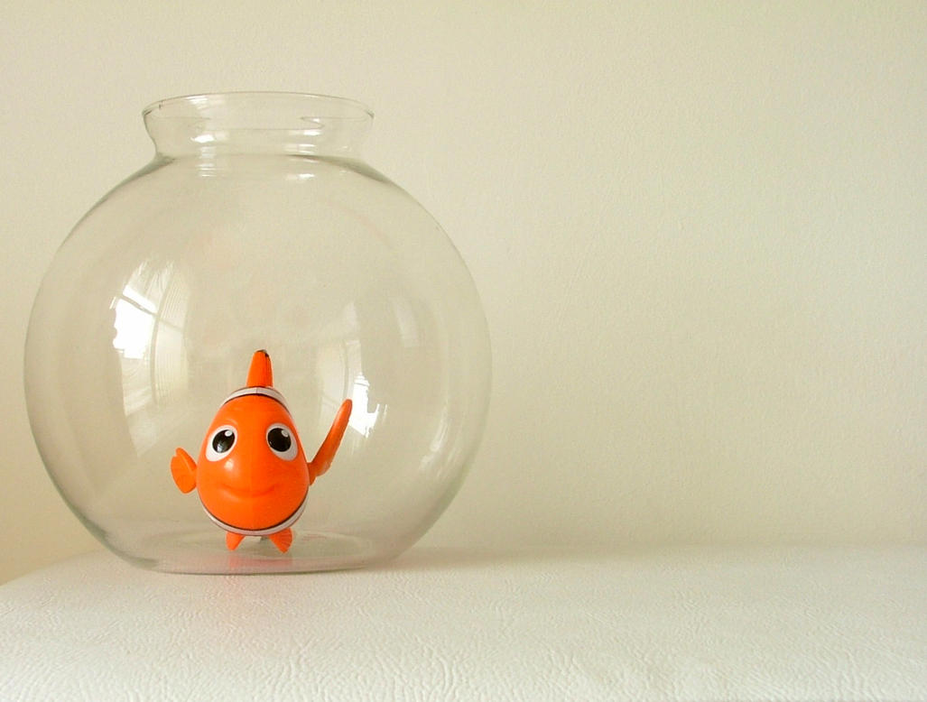 Finding Nemo by Candyshop
