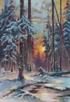 Winter Sunset in a Fir Forest