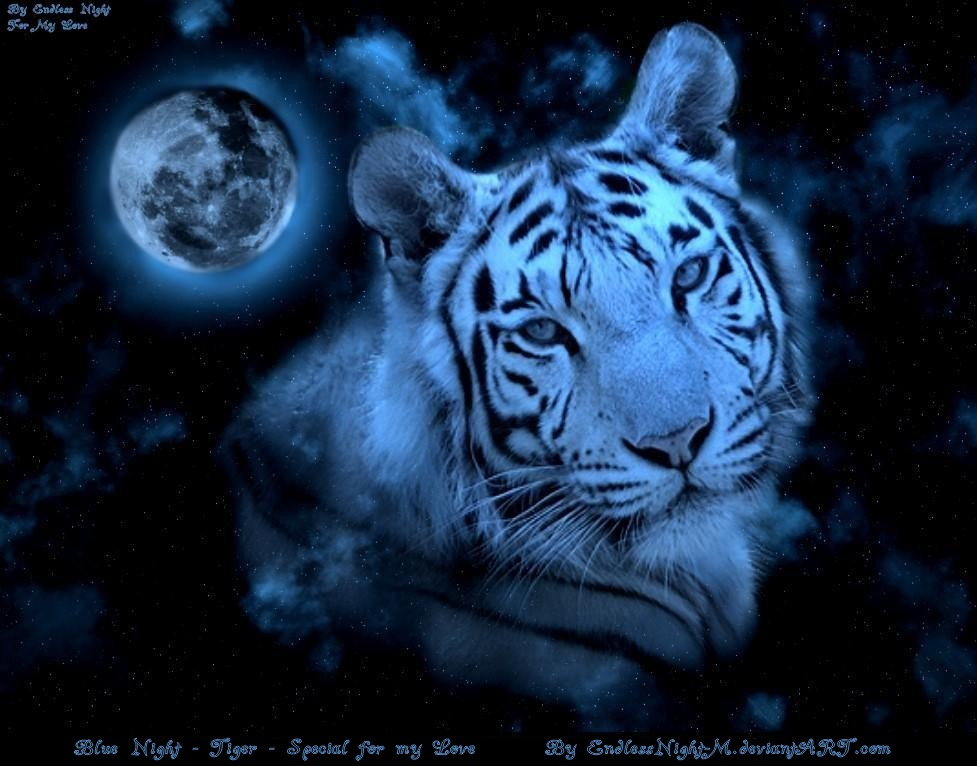 Fantasy white tiger - photo#17