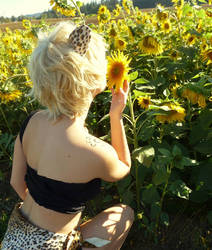 Stopping to smell the sunflowers