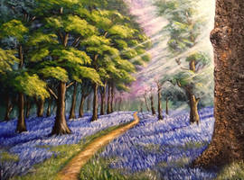 Bluebells in the morning sun by llenllawg