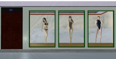 Bikini Shop by Sanders-99