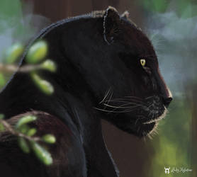 Black Panther - speed painting