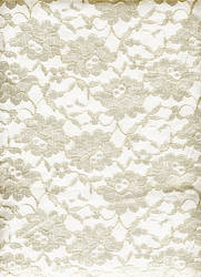 Lace Cream on White by KameleonKlik