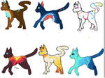 20-40 point adopts