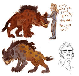Hyenas and divine consort janitor