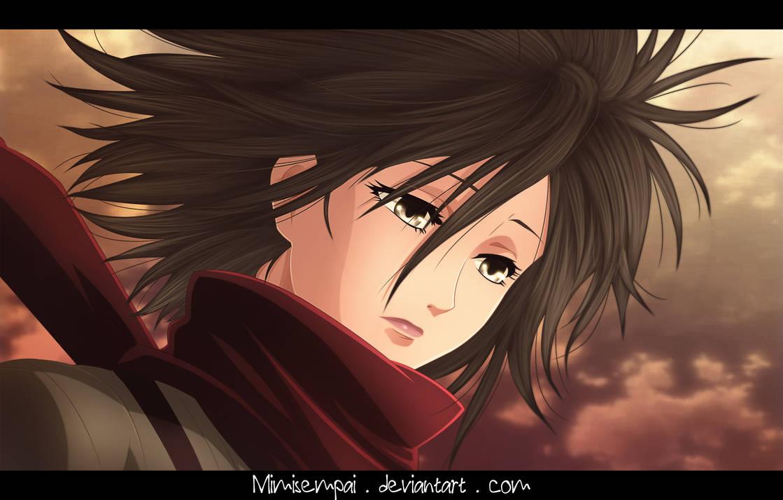Shingeki No Kyojin : Mikasa_If sadness had a face.