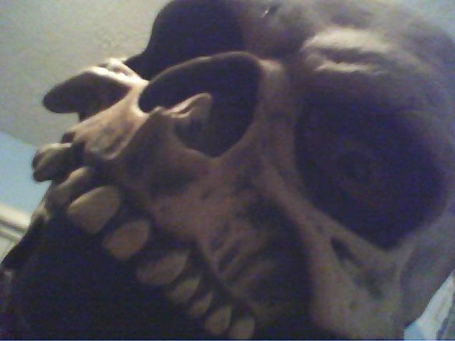 EddyGrunge's Profile Picture