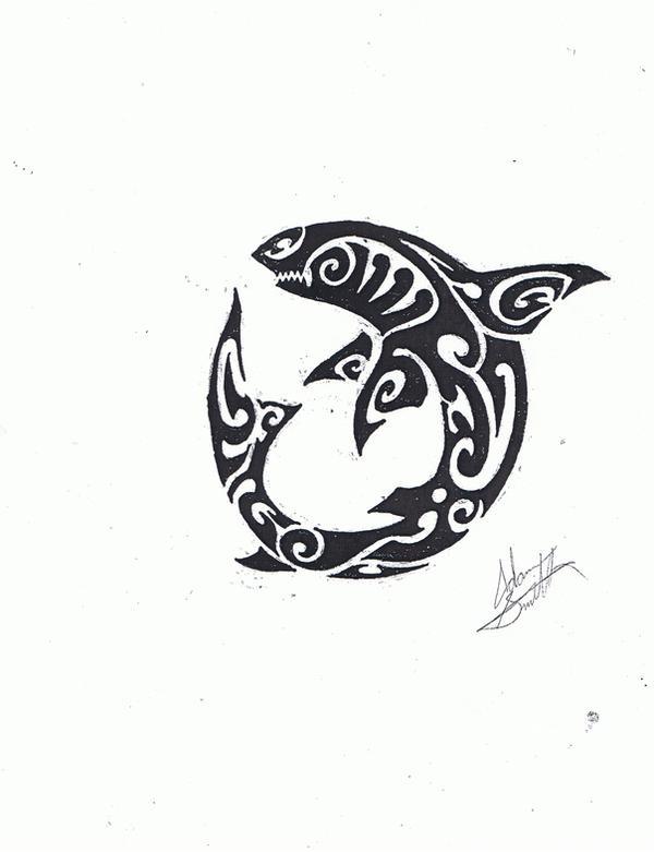Shark hybrid drawing - photo#13