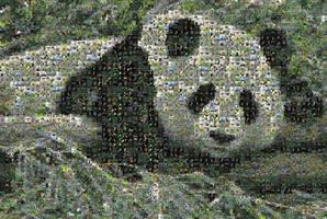 C-Commons Photomosaic Panda 2 by Tux-t-penguin