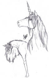 Unicorn character sketches