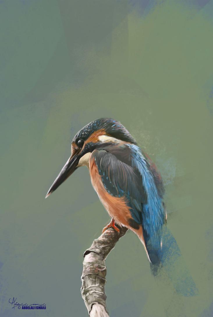 Bird by arabdel