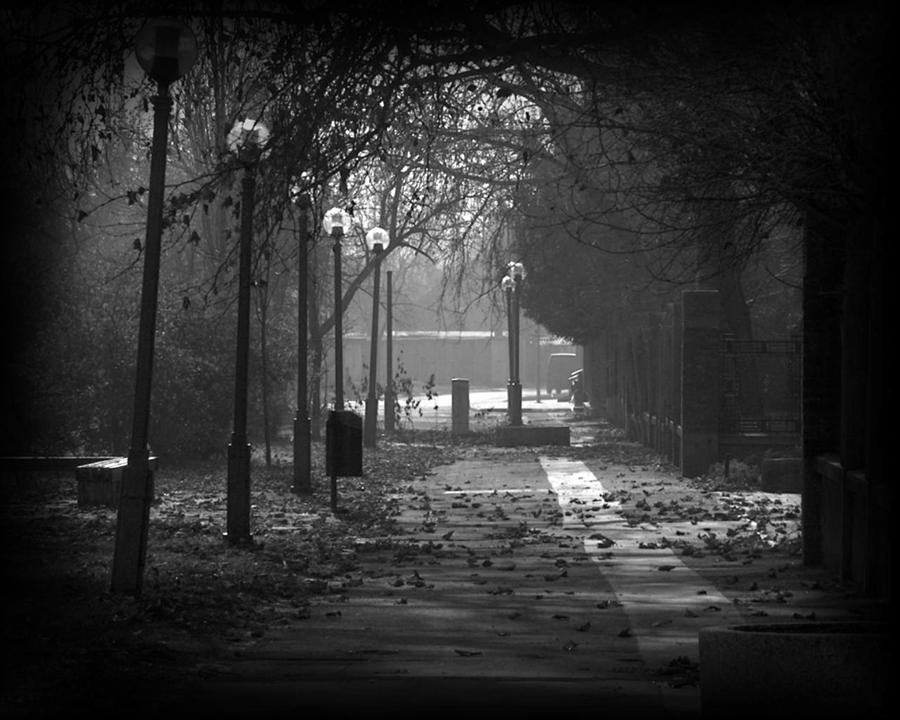 lonely by KleemannAB