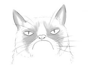 Grumpycat Sketch