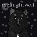howrse avatar by missy-midnight