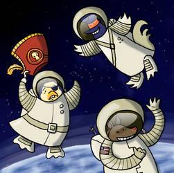 PP vs NC in Space by Karwei