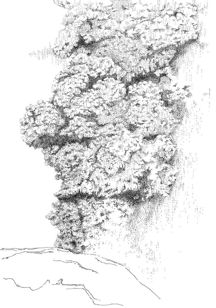 eruption by onverra