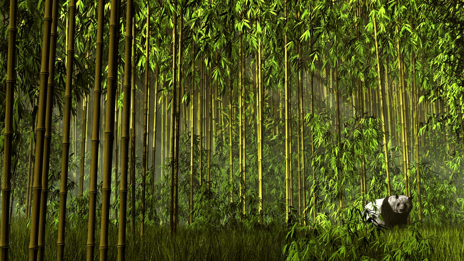 Bamboo Forest by x