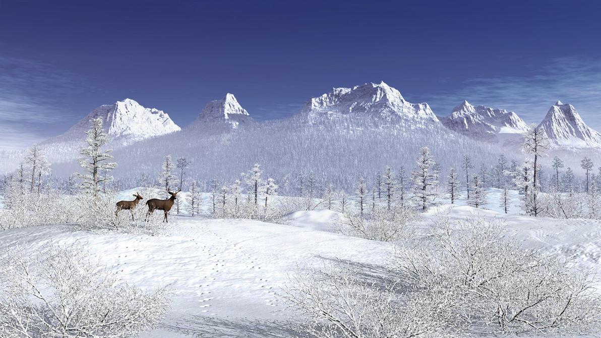 Winter Wonderland by xmas-kitty on DeviantArt