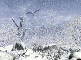 Snowy Owls by xmas-kitty