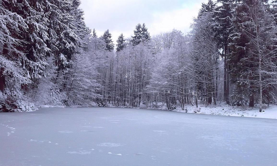Frozen Pond by xmas-kitty