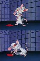 Pinky and the Brain by Kuroda-Kumiko