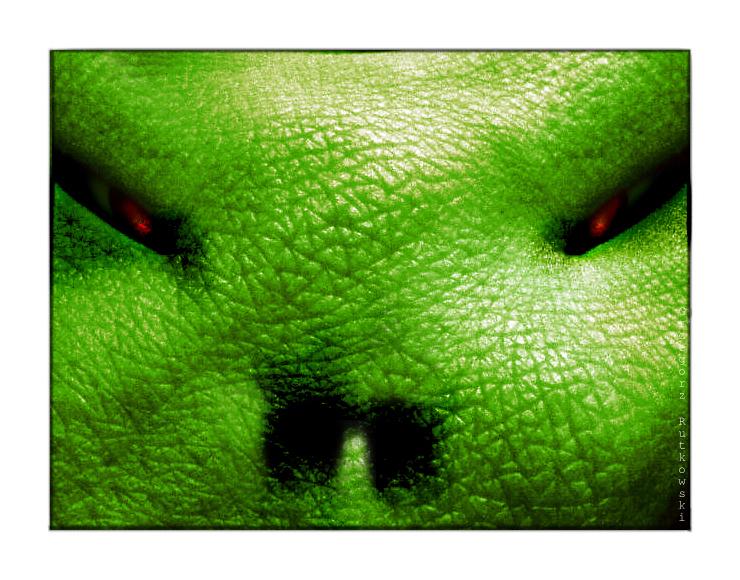 Goblin's eyes by 88grzes